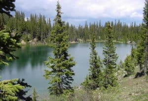 Colorado lake and pines