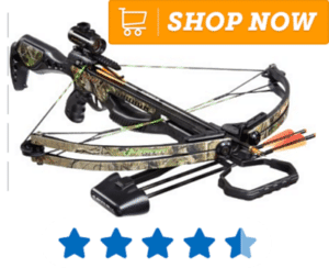Hunting cross bow with two bolts