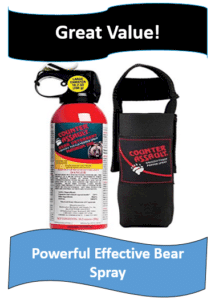 bear spray and holster