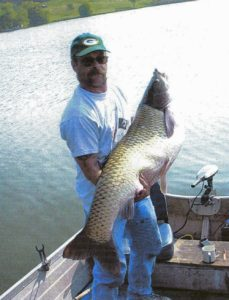 fisherman holding giant carp