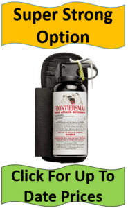 bear spray with holster