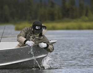 angler on boat pulling fish from lake