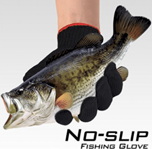 gloved hand holding bass