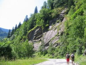 two guys hiking by forested mountain