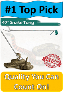 4 foot snake tongs grabbing rattlesnake