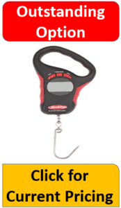 gray electronic fish hook scale