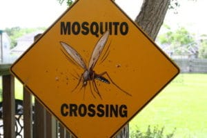 yellow mosquito crossing sign