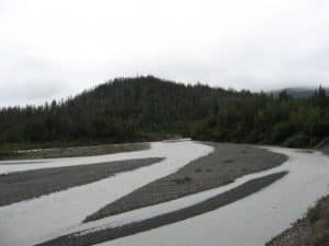 Alaska stream with woods and stones