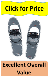 pair gray snowshoes
