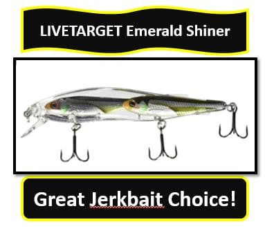 emerald shiner jerkbait from LIVETARGET