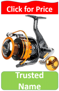 gold and silver fishing reel