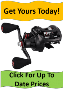 black torrent baitcasting reel