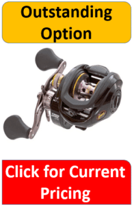 gray yellow Lews baitcasting reel