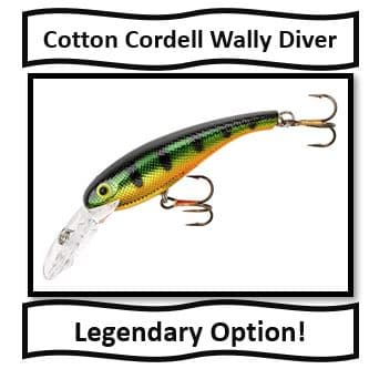 Cotton Cordell Wally Diver - best walleye fishing lures