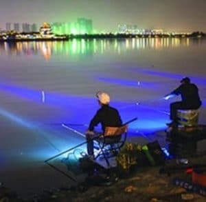 two night anglers shore fishing blue lights
