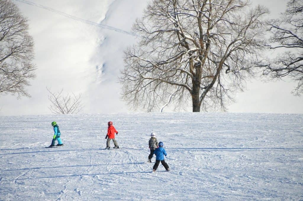 kids skiing in winter
