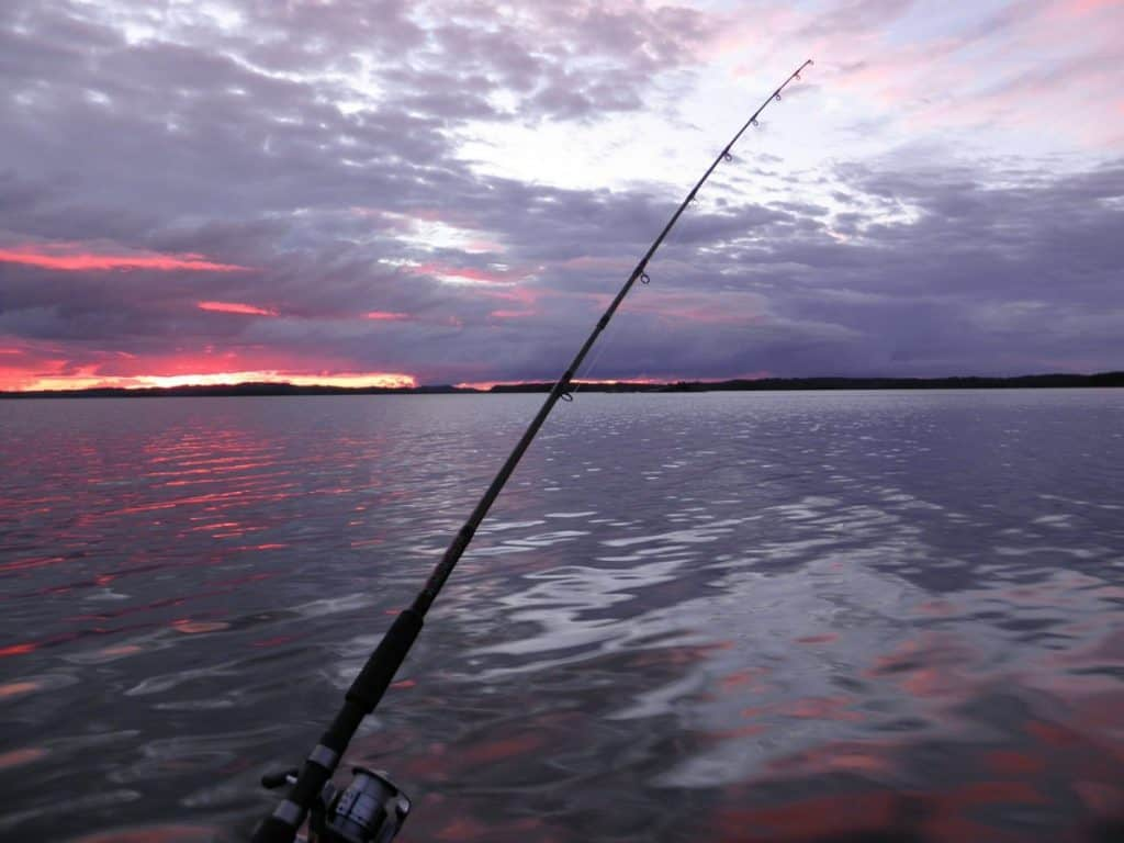 trolling for fish at dusk